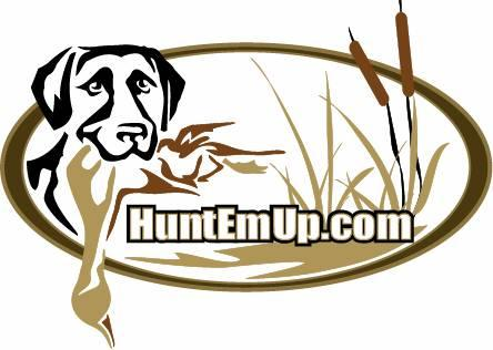 The World Wide Sporting Dog Super Store and Hunting Dog Blog!